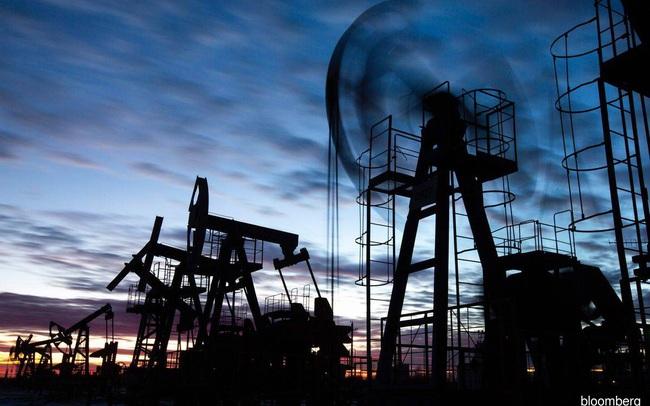 """Bloomberg: Nga thành """"ngôi sao sáng"""", ông Putin ngồi yên thu lợi trong lúc thế giới hỗn loạn vì khủng hoảng năng lượng"""