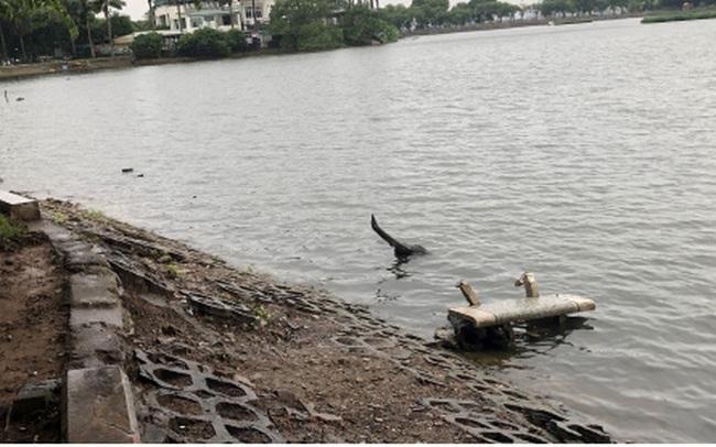 Bờ hồ Trúc Bạch giữa Hà Nội hư hỏng, nhếch nhác gây mất mỹ quan đô thị