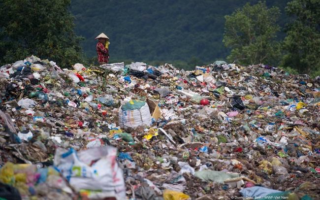 4 việc bạn có thể làm ngay hôm nay để giảm rác thải nhựa, giúp môi trường thiên nhiên thêm trong sạch