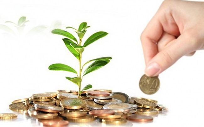 Thị giá giao dịch quanh vùng đỉnh, IPA thông qua phương án phát hành cổ phiếu thưởng tỷ lệ 100%