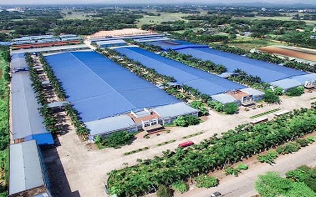 Thêm 2 khu công nghiệp diện tích gần 1.000 ha tại Thái Nguyên vào quy hoạch phát triển các khu công nghiệp ở Việt Nam