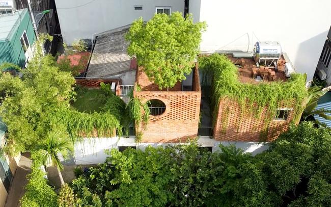 Ngôi nhà 64 m2 tại Hà Nội như một khu vườn với rau và cây ăn trái