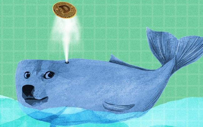 """Bất ngờ một """"cá mập"""" đang sở hữu 2,1 tỷ USD tiền ảo Dogecoin"""