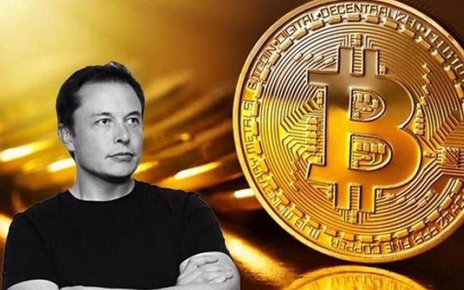 """Elon Musk: Bitcoin đỡ """"ngớ ngẩn"""" hơn tiền mặt"""