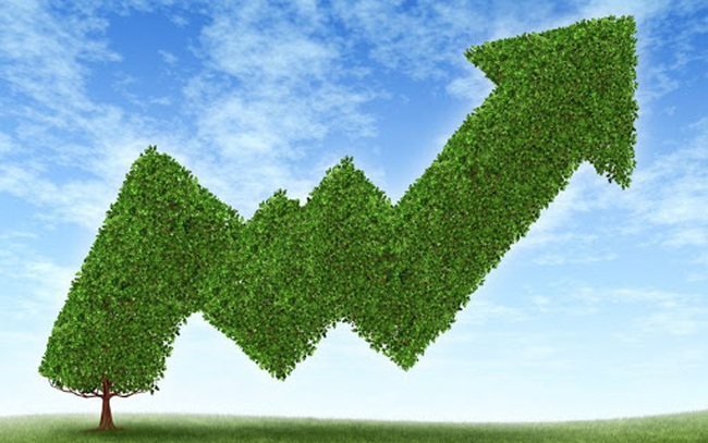 Phục hồi kinh tế xanh – không còn là khẩu hiệu