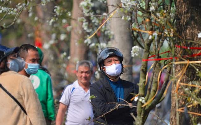 Ảnh: Hàng trăm người dân Hà Nội đổ xô đi mua hoa lê về chơi Rằm tháng Giêng