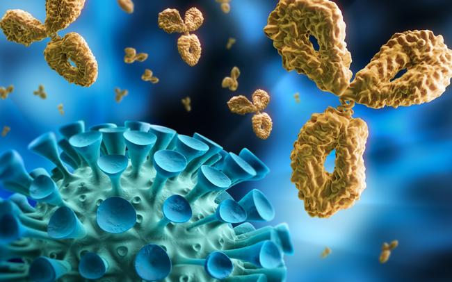 Một trẻ sơ sinh có tải lượng virus SARS-CoV-2 cao gấp 51.148 lần bình thường khiến các nhà khoa học đau đầu