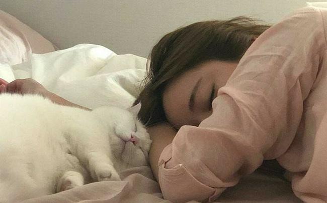 Ngủ kiểu này còn nguy hiểm gấp nhiều lần thiếu ngủ: Sức khoẻ suy giảm thấy rõ, hệ luỵ sau này càng đáng ngại!
