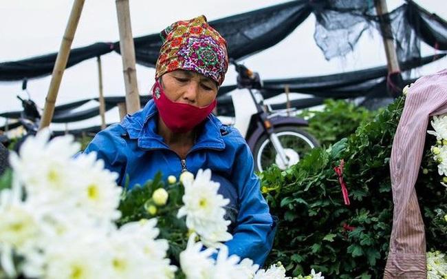 Nông dân ngậm ngùi cắt bỏ hoa do dịch Covid-19