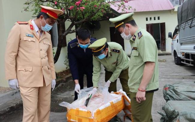 Sử dụng biển số xe giả để vận chuyển 2,5 tấn nầm lợn đã biến chất