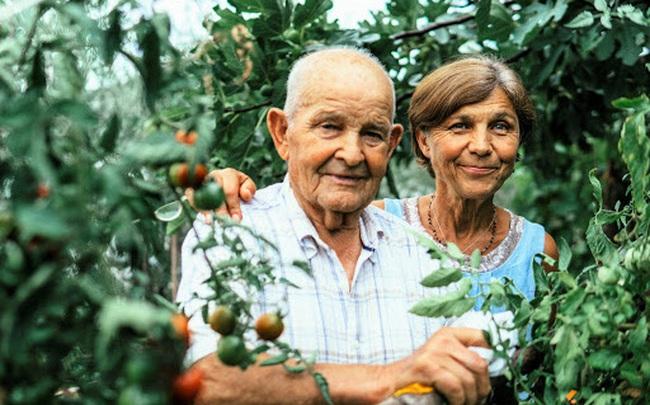 Tiết lộ sở thích chung mà nhàn hạ của những người sống lâu nhất trên thế giới: Không phải thú chơi xa xỉ cũng chẳng phải việc gì cần quá nhiều kỹ năng!