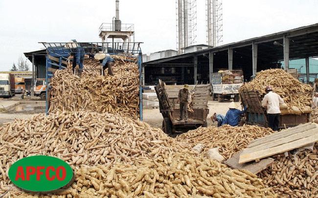 Nông sản thực phẩm Quảng Ngãi (APF): LNST 2020 tăng 157% lên 234 tỷ, EPS đạt 11.555 đồng