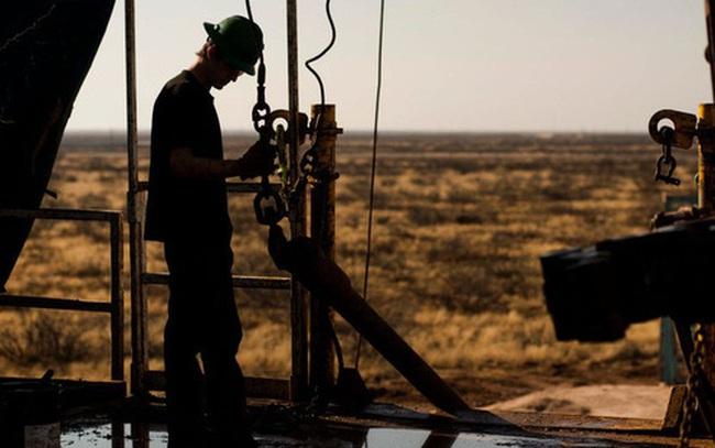 Các quỹ đầu cơ đang đặt cược mạnh vào dầu thô, đẩy giá tăng mạnh