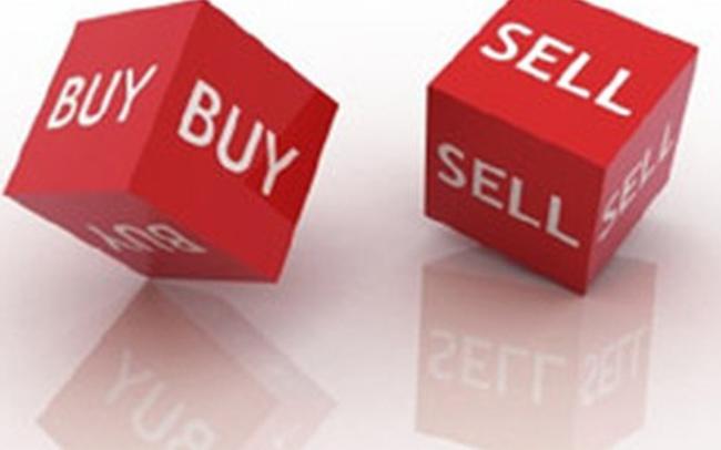 BCG, ACB, FRT, NED, DAH, CRE, HTN, DHC, TDL, ELC, GKM, DNC, VAF, VE1, LBE: Thông tin giao dịch lượng lớn cổ phiếu