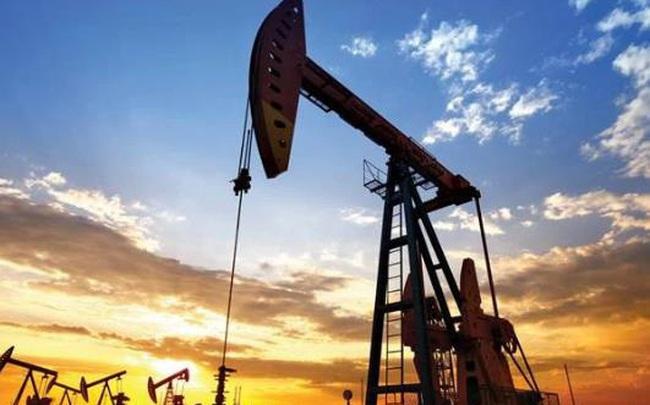 Goldman: Giá dầu giảm là cơ hội để mua vào