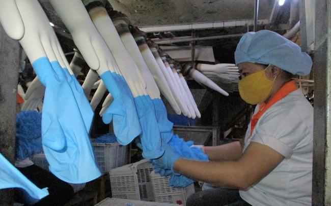 Sản xuất găng tay y tế kín đơn hàng đến năm 2022