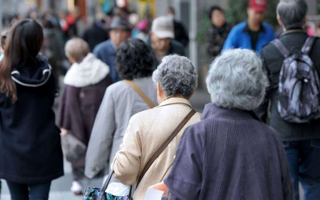 Người Nhật Bản không thích thể thao nhưng vì sao vẫn có tuổi thọ dài nhất thế giới? Vì họ không ăn no và dùng bát đĩa đẹp để bày biện đồ ăn!