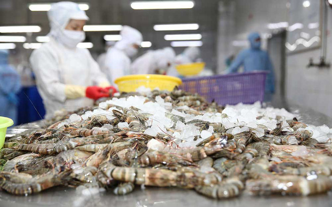 55 lô tôm sú Việt Nam bị từ chối nhập vào Trung Quốc
