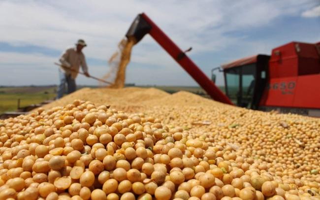 """Thị phần sữa đậu nành nhảy vọt lên 86% nhưng Vinasoy đang bị thách thức lớn trước """"cơn sốt"""" tăng giá nông sản thế giới"""