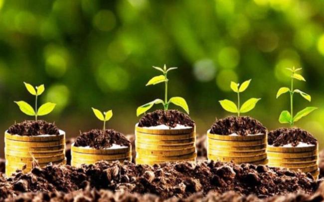 Điểm danh những doanh nghiệp chốt quyền nhận cổ tức bằng tiền, bằng cổ phiếu và cổ phiếu thưởng tuần từ 29/3-2/4