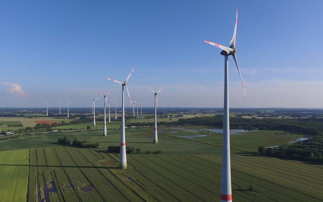 Phú Yên chuyển mục đích sử dụng đất rừng để thực hiện dự án điện gió hơn 1.700 tỷ đồng