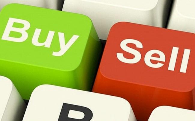 VGC, NVL, CC1, HAH, HVH, DHC, SFI, L18: Thông tin giao dịch lượng lớn cổ phiếu