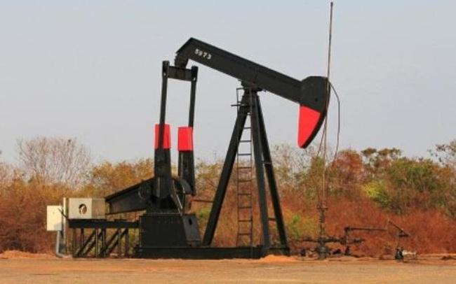 OPEC + hạ dự báo về tăng trưởng nhu cầu dầu mỏ
