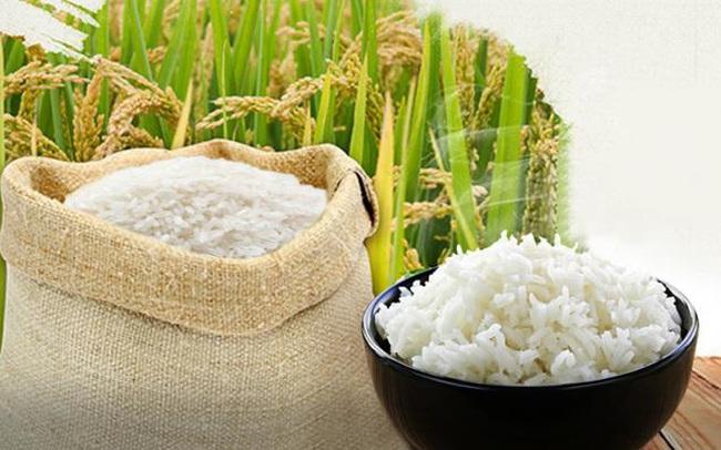 Giá gạo Châu Á tiếp tục giảm, gạo xuất khẩu của Việt Nam xuống dưới 500 USD/tấn