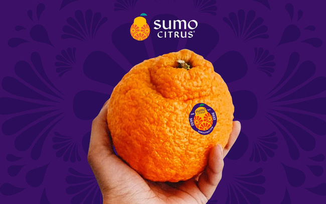 Chiến lược marketing độc đáo khiến người Mỹ 'mê mệt' quýt Nhật, có lúc phải mua với giá 10 USD/quả dù đây không phải loại quýt thơm ngon nhất
