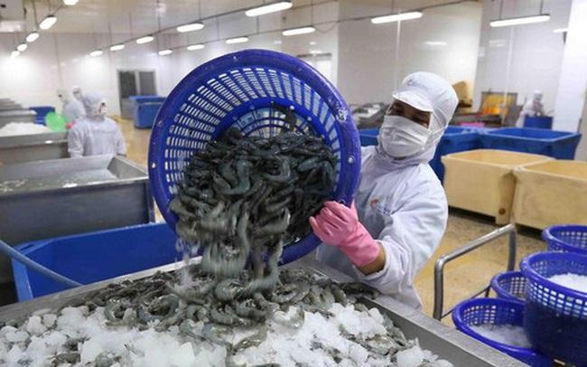 Công ty mẹ Minh Phú (MPC): Quý 1 lãi 102 tỷ đồng, giảm 25% so với cùng kỳ 2020