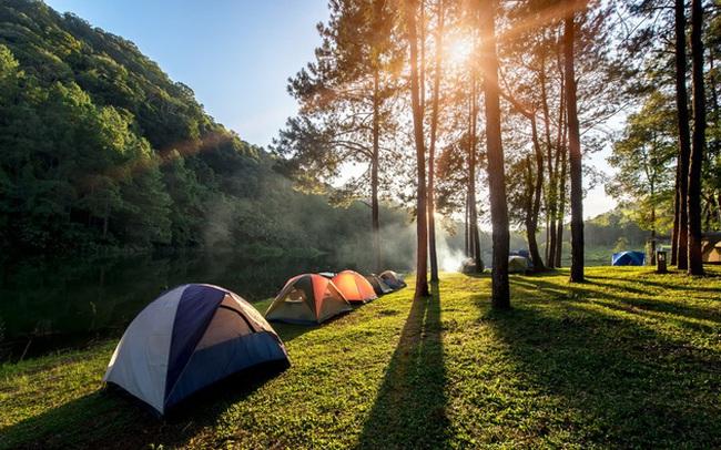 Đi camping hay là du lịch nhất định phải thuộc lòng những kỹ năng sơ cứu này
