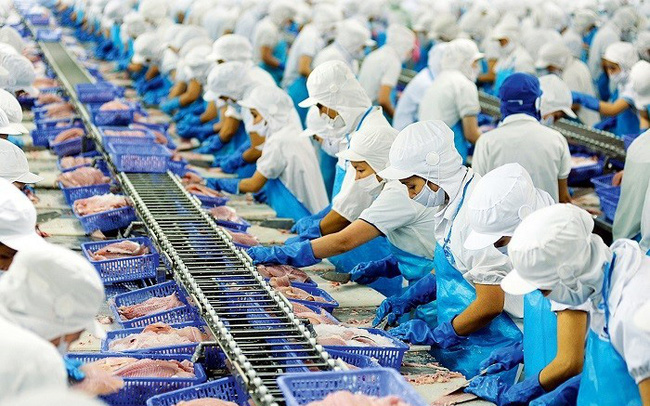 Xuất khẩu thuỷ sản Việt Nam lấy lại đà tăng trưởng