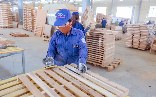 Phú Tài (PTB) chốt danh sách cổ đông trả cổ tức tỷ lệ 25,5%