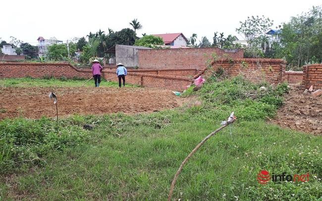 Giá đất tăng cao, nhà đầu tư 'tháo chạy' khỏi thành phố, vác tiền về quê đầu tư đất