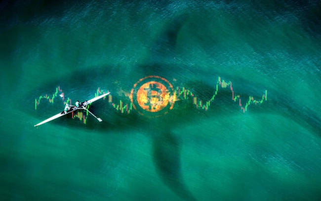 Một trong những 'cá voi' lớn nhất trên thị trường tiền số: 2 người bạn trung học với danh mục đầu tư trị giá hàng tỷ USD, chủ yếu là Ether