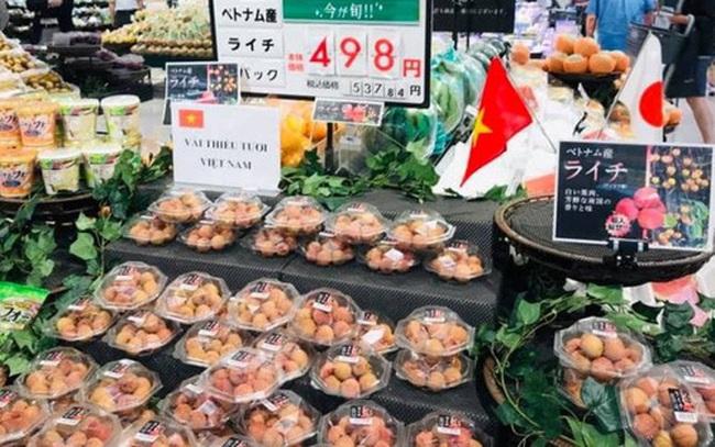 Bay thẳng sang Nhật, 20 tấn vải thiều Bắc Giang được tiêu thụ gần hết ngay ngày đầu lên kệ, với giá 500 ngàn đồng/kg