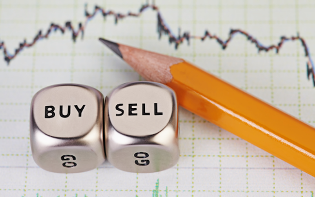 LDG, NLG, CRE, HNG, ITA, TEG, PAC, TRT, PTL, SHB, VC3, MHL: Thông tin giao dịch lượng lớn cổ phiếu