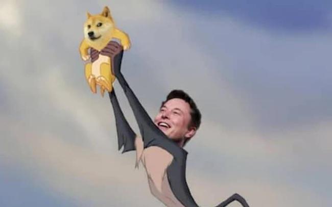 Dogecoin lao dốc 30% vì Elon Musk