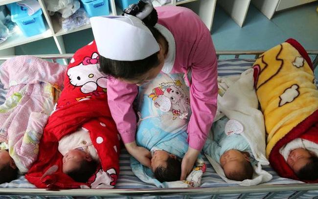"""Trung Quốc cho phép đẻ 3 con, dân than thở: """"Lợn không muốn đẻ thì đừng ép lợn đẻ, nuôi thân còn không xong!"""""""