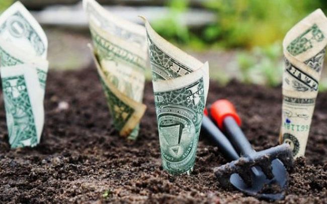 """""""Đồng tiền hiếm nhất là đồng tiền được tiêu một cách khôn ngoan"""": Muốn giàu thì hãy học cách quản lý tiền bạc, đừng để nó chi phối cuộc sống"""