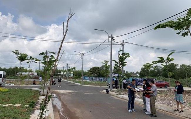 Săn đất nền các tỉnh phía Nam: Tránh tình trạng sau cơn sốt là khu đất hoang