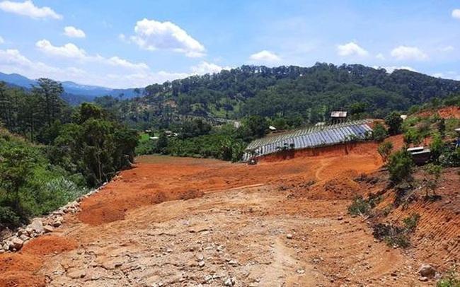 Lâm Đồng thu hồi 286ha đất tại dự án của Công ty Hàn Việt