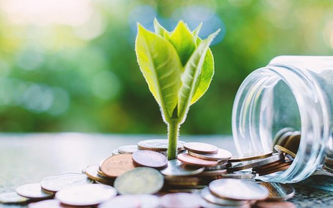 Cát Lợi (CLC) trả nốt cổ tức đợt cuối năm 2020 bằng tiền tỷ lệ 20%