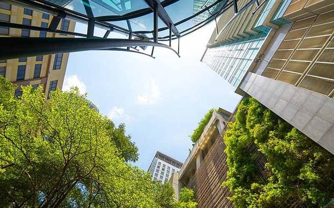 JLL Việt Nam: 65% nhà đầu tư bất động sản sẽ để mắt đến các công trình xanh