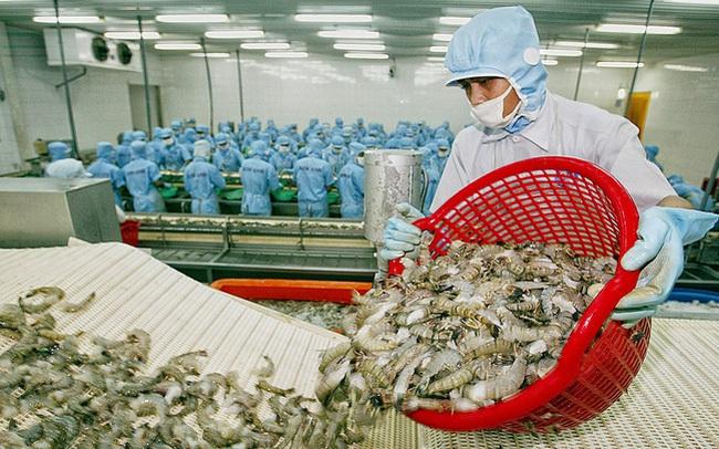 Xuất khẩu tôm 5 tháng đầu năm 2021 đạt 1,31 tỷ USD