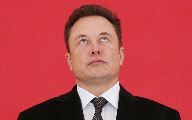 'Giấc mộng Trung Hoa' sớm nở tối tàn của Elon Musk