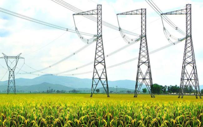 Tư vấn xây dựng điện 2 (TV2) triển khai phát hành 9 triệu  cổ phiếu trả cổ tức