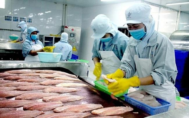 Vĩnh Hoàn và Nam Việt không bị áp thuế chống bán phá giá cá tra vào Mỹ