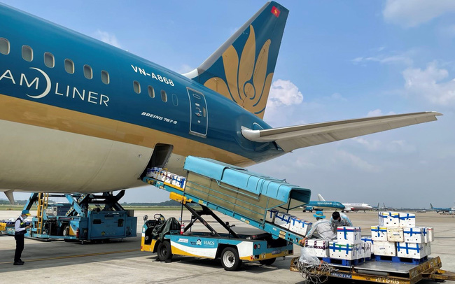 """Kỳ lạ vải thiều Bắc Giang """"ngồi"""" khoang hành khách siêu máy bay vào TP Hồ Chí Minh"""