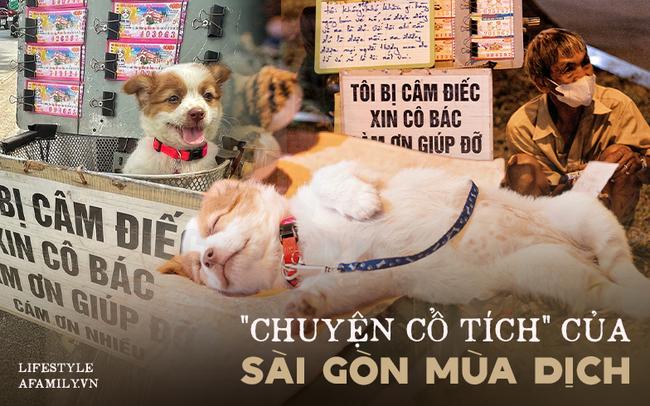 Cụ ông câm điếc cưu mang chú chó nhỏ, thà rong ruổi bán từng tờ vé số chứ không nhận 70 triệu khi người Sài Gòn dang tay giúp đỡ